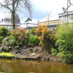 River Wye in bloom